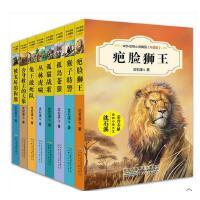 动物小说精品升级版8册被宠坏的狗熊+舍身救主的大象+猴子特警+孤岛苍狼+丛林虎啸+疤脸狮王+孤猫战歌+兔王敢死队