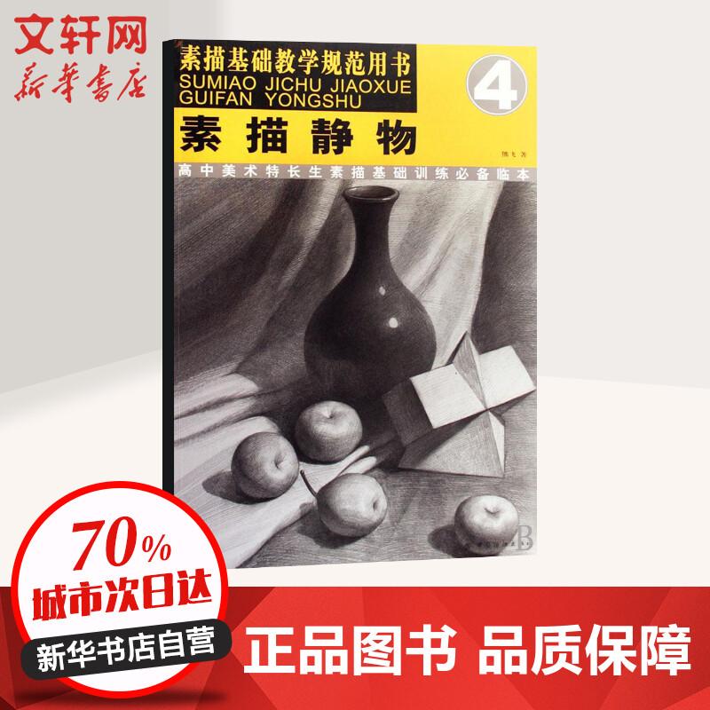 《素描静物/素描基础教学规范用书4