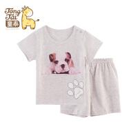 童泰 0-1-2岁男女宝宝夏季短袖短裤套装 儿童夏装