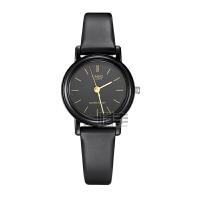 卡西欧(CASIO)手表 时尚简约系列 女士手表石英手表 LQ-139AMV-1E