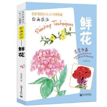 绘画技法 手绘插画教程 彩铅书素描美术经典畅销书籍