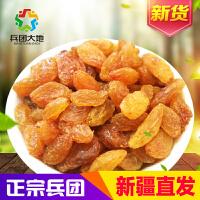 【兵团大地】黄珍珠葡萄干260g 新疆吐鲁番葡萄干 新疆特产