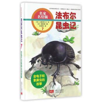 金龟子和象鼻虫的故事-法布尔昆虫记-7-名家名绘版