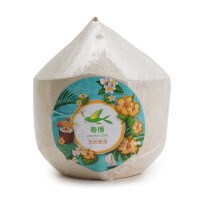 春播 优选泰国椰子 椰青 9个装