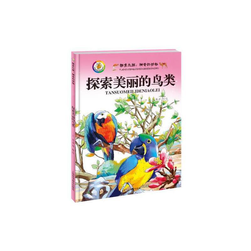 神奇的动物探索美丽的鸟类动物世界大百科全书小学彩图儿童动物书动物