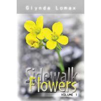 【预订】Sidewalk Flowers - Volume 1: Stories to Inspire, Motivate and Encourage