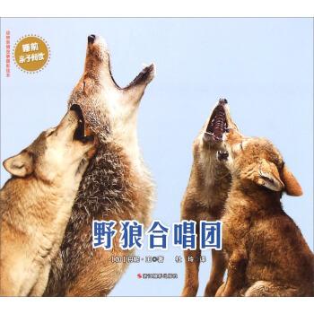 全新正版动物亲情故事摄影绘本:野狼合唱团 [加] 丹妮·王;杜玲
