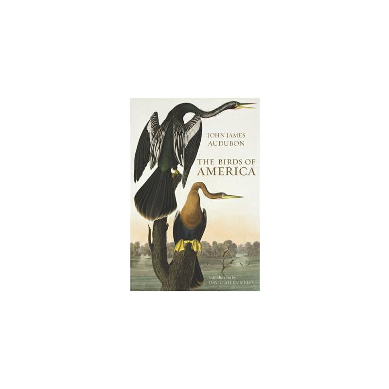 关于动物百科的英文手抄报