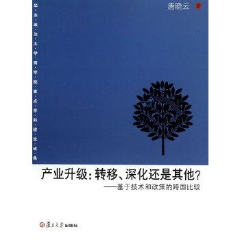 上海政法学院学术文库经济法学系列 产业升级:转移,深化还是其他?——基于技术和政策的跨国比较
