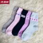 【北极绒】保暖爱心冬季厚款女袜【5双】四季中筒袜学院风韩版学生女袜子
