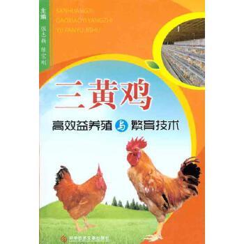 三黄鸡高效益养殖与繁育技术