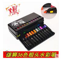 台湾雄狮水彩笔 36色儿童无毒涂鸦绘画笔 粗头水彩笔套装