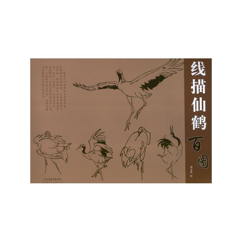 线描仙鹤百图 邓文欣 天津人民美术出版社