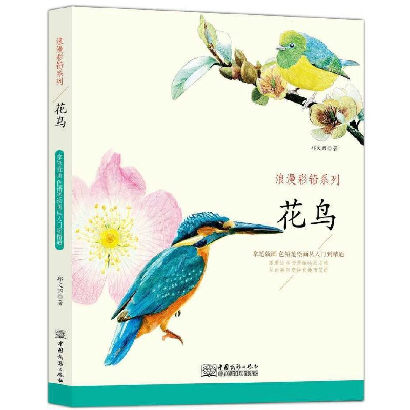 浪漫彩铅系列花鸟篇 感受花与鸟的唯美动人 花之绘素描彩铅画色铅笔画