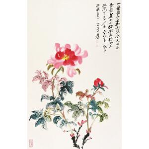 张大千(款)花 卉