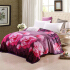 优雅100 加厚法兰绒毯子 珊瑚绒毛毯床单毛巾被午睡单人双人盖毯 好床品