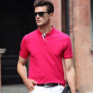 伯克龙 短袖T恤男士 夏季新款纯棉立领POLO衫舒适透气纯色修身青年男装 Z87570