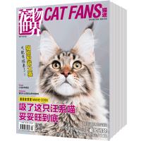 宠物世界猫迷 家庭生活期刊2017年全年杂志订阅新刊预订1年共12期